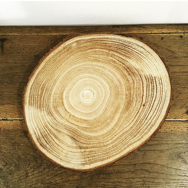 Grand rondin de bois
